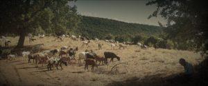 In den Bergen von Mavro