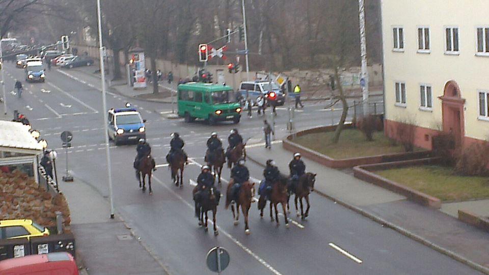 hfc pferde
