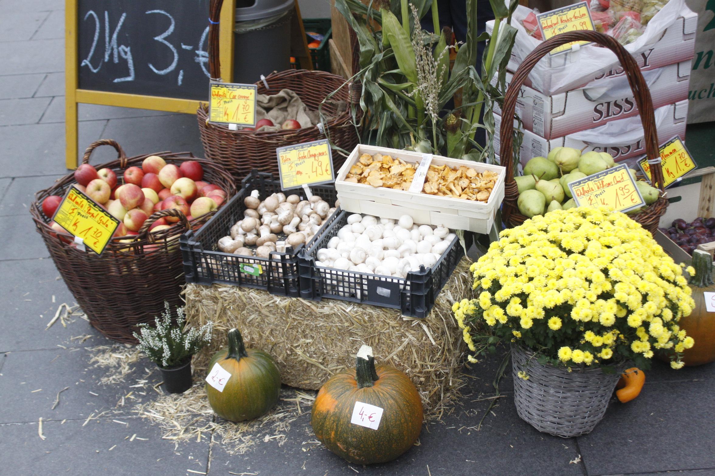 Bauernmarkt_MG_8944