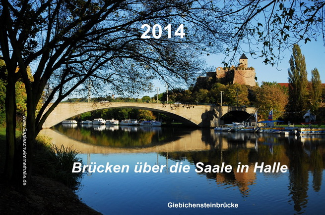 Saaleschwimmer_Brücken über die Saale in Halle 2014
