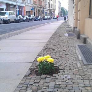 Geiststraße