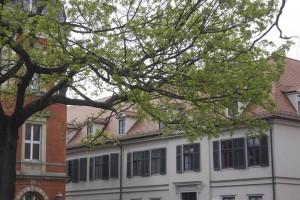 Leopold-Zunz-Zentrum / Seminar für jüdische Studien