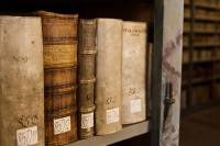 Bücher aus dem Bestand der Bibliothek. Foto: Burkhardt Peter
