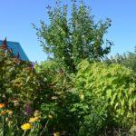 Muttis Garten