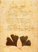 goethe_ginkgo_biloba-handschrift-1815-quelle-wikipedia