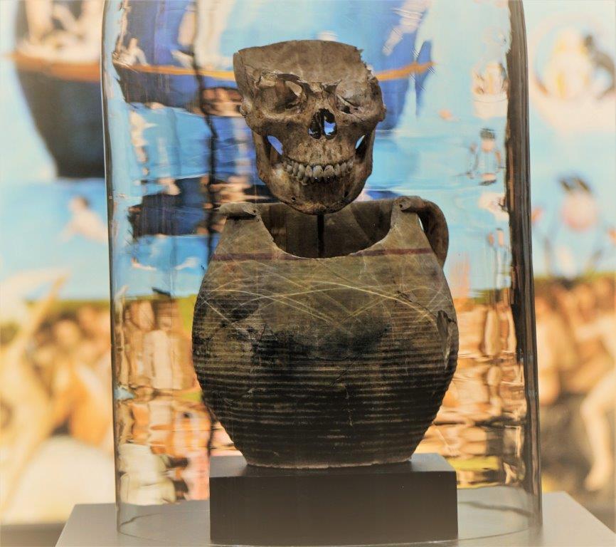 Sezierter Schädel auf Bestattungskrug
