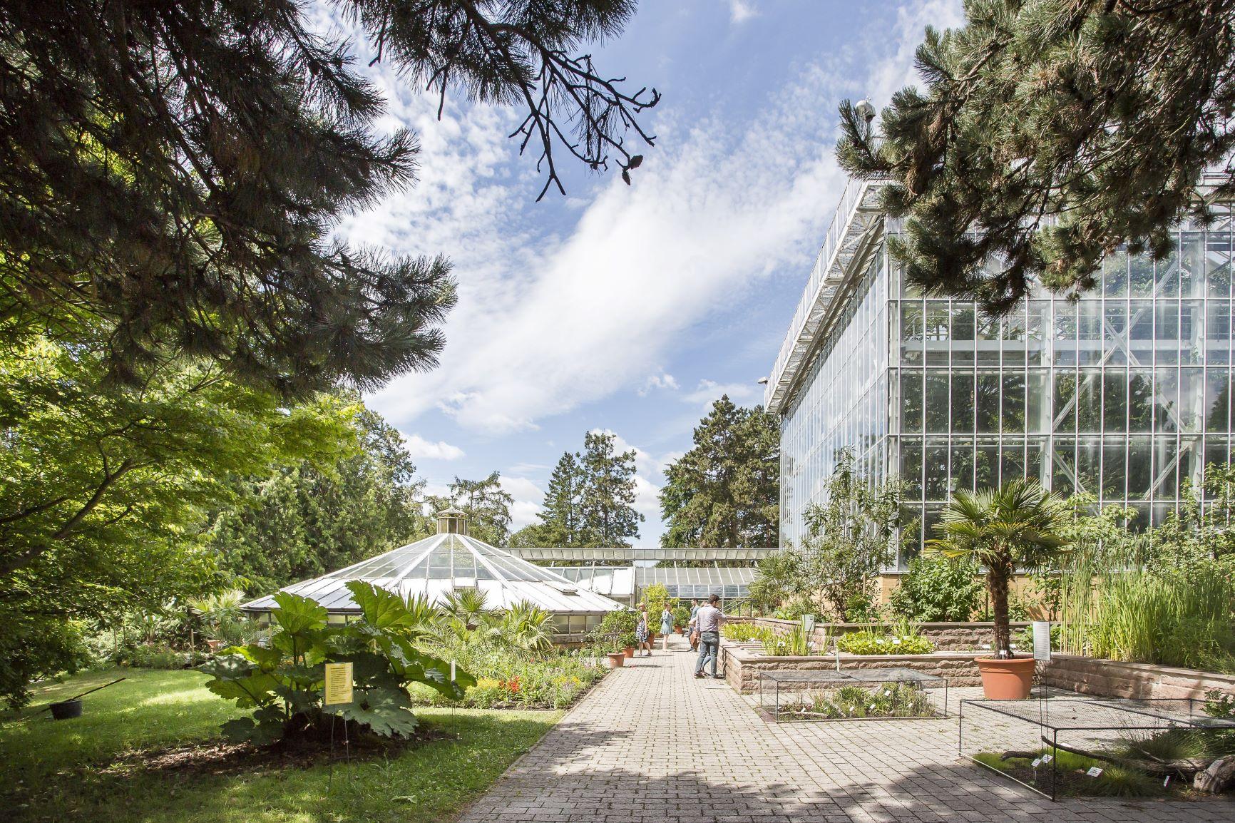 Nach Corona Pause Botanischer Garten Offnet Seine Gewachshauser Wieder Fur Besucher Hallespektrum De Onlinemagazin Aus Halle Saale
